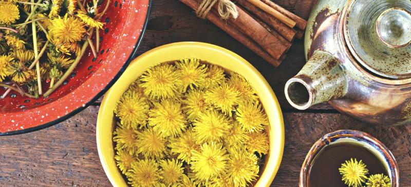 author jessica james makes dandelion tea