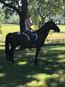 author jessica james history on horseback